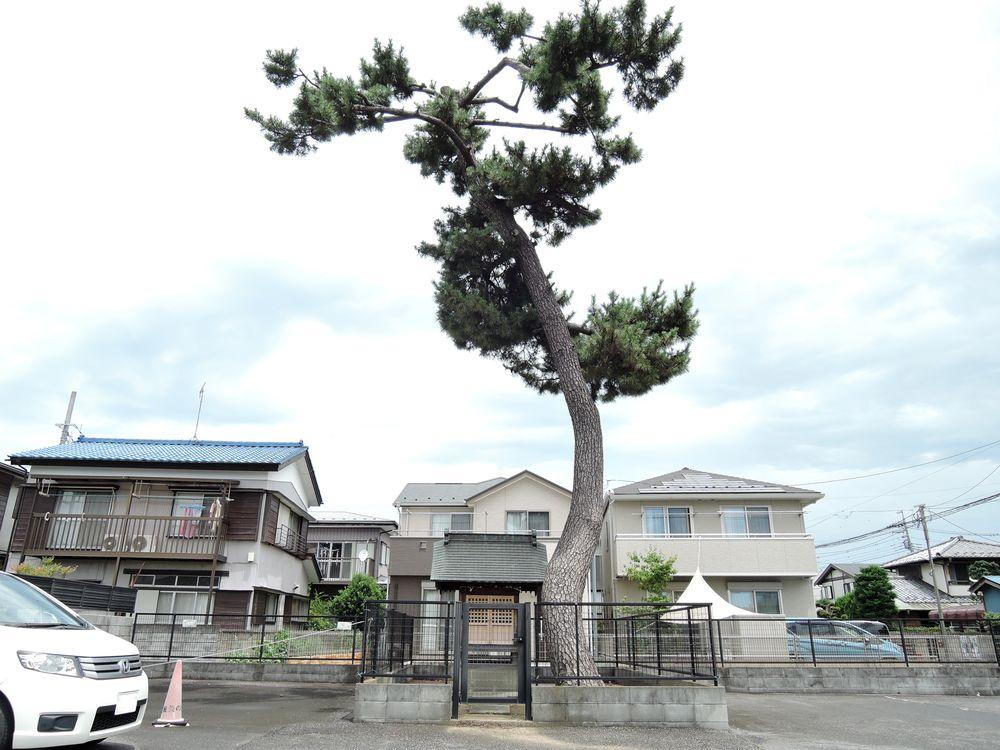 四町野村にあった愛宕神社の大山祇命文字塔と大山講|越谷市宮本町