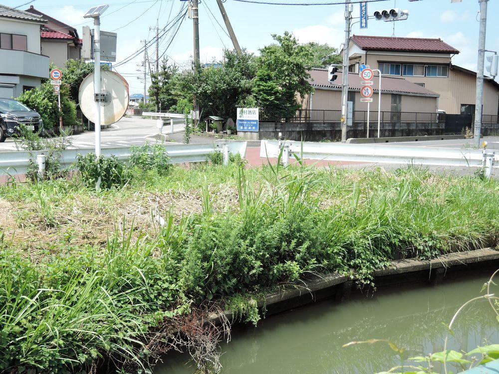 新川(古綾瀬川)沿い路傍の石仏|越谷市新川町